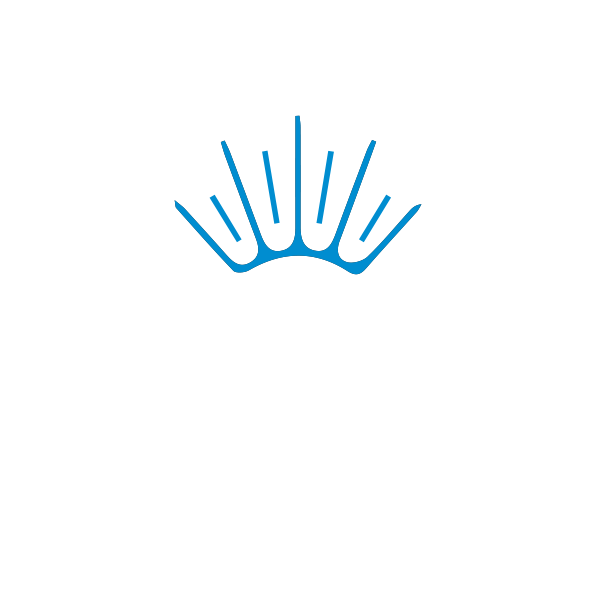 Osteria Maré | Ristorante di Pesce a Roma